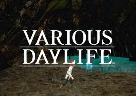 VariousDaylife