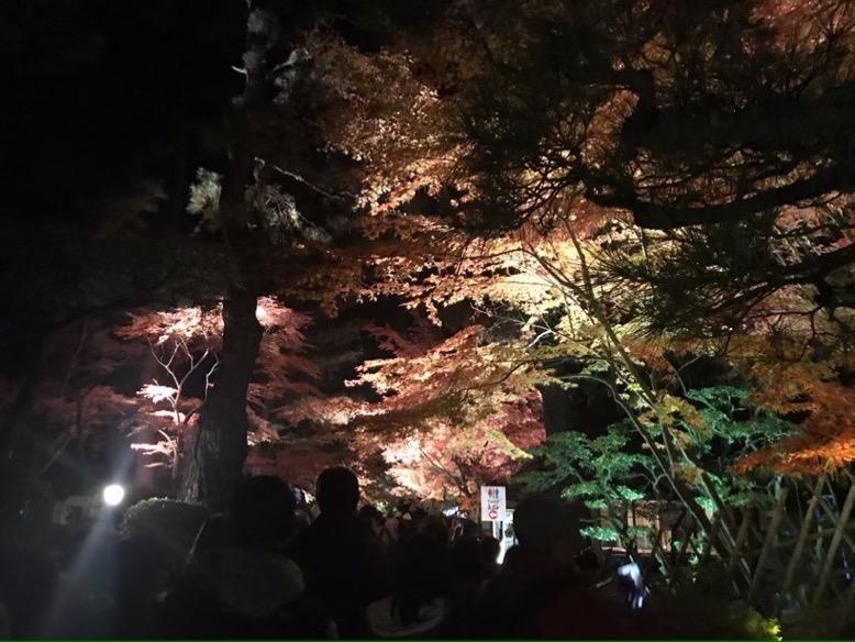 栗林公園紅葉